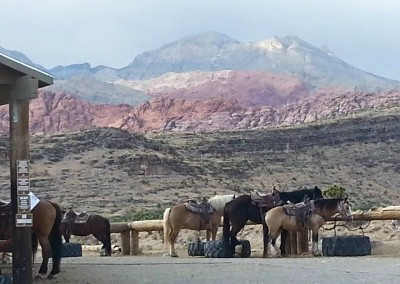 red rock horseback riding tour 1a