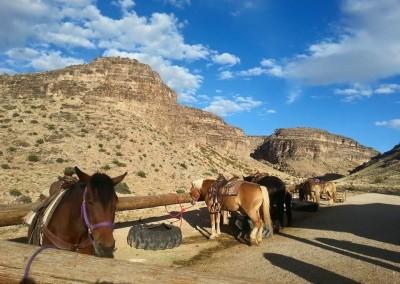 red rock horseback riding tour 1c