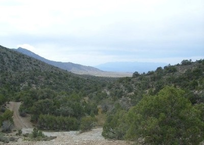 1 Header Photo for  Mt Charleston Tour Page